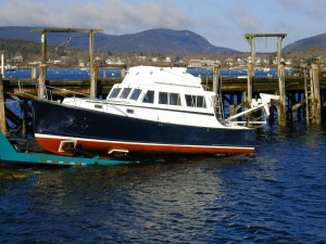 Ellis 32003 Launch